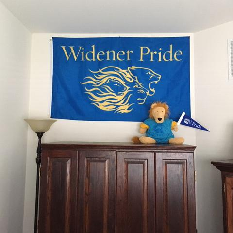 Widener Pride flag hanging on a wall