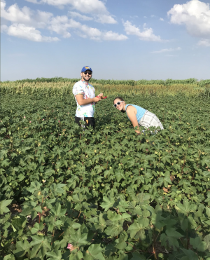 Biology Alumnus Evan Perkowski conducts field work