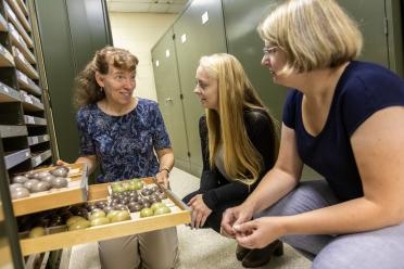 Museum curator shows natural history collection
