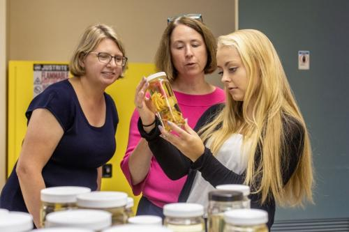 Museum curator, Widener professor and student view natural history collections