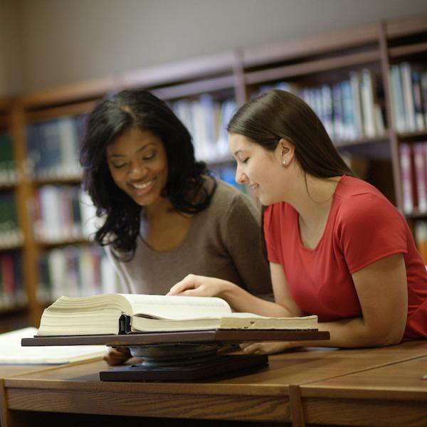 Law students studying in library