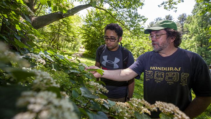 Faculty Mentorship at Taylor Arboretum